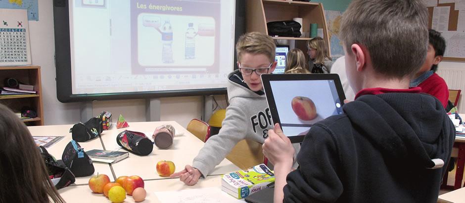«Les énergivores», une web série d'éducation à la maîtrise de l'énergie