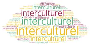 Vidéo 1  : l'interculturel en classe de FLE (Les micro-vidéos éducatives dans la classe de FLE)